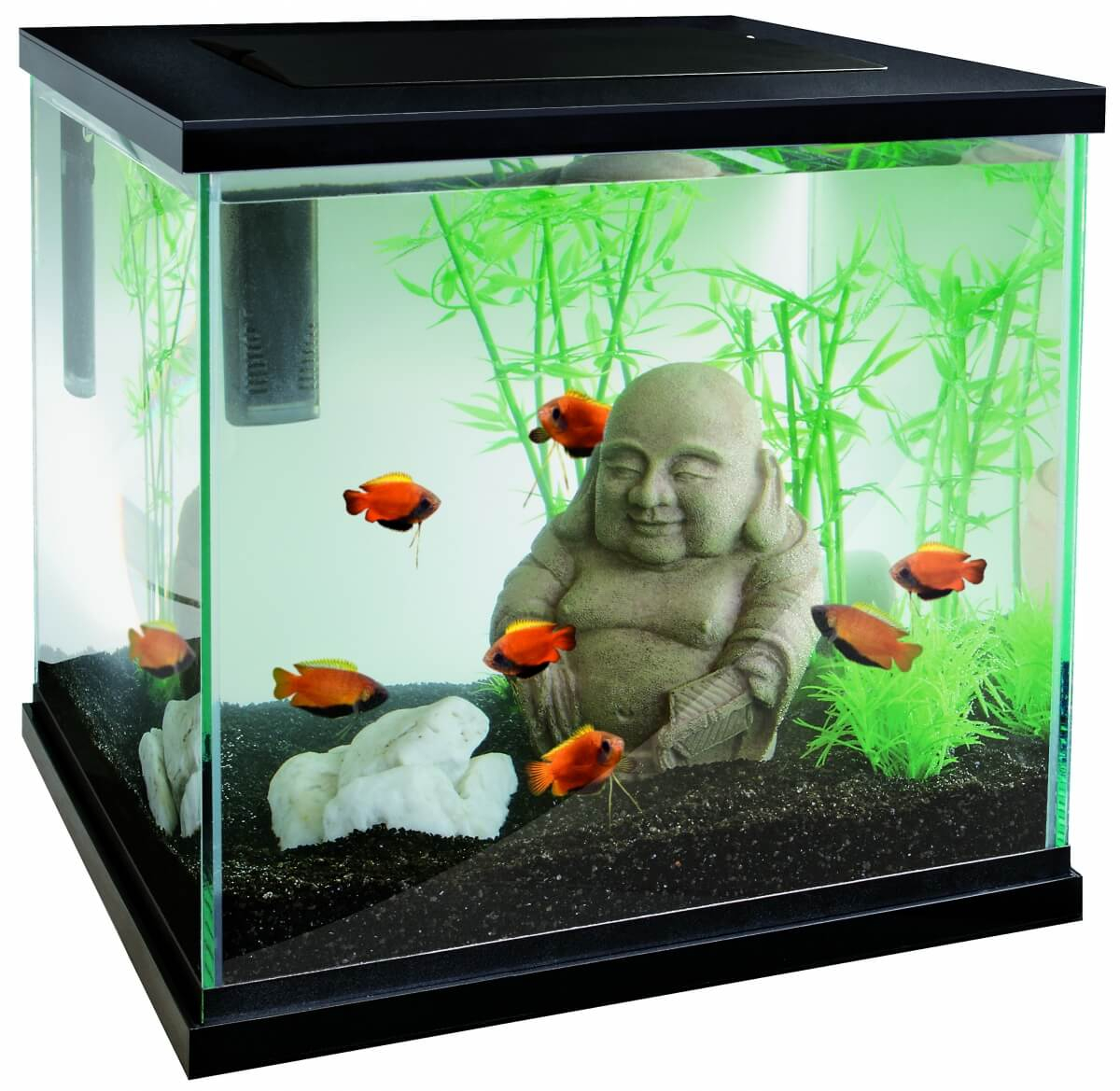 Aquarium zen 30 Superfish - blanc ou noir_0