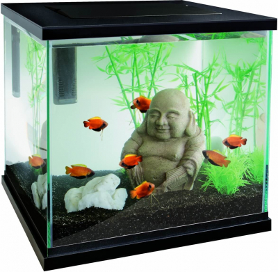 Aquarium zen 30 Superfish - blanc ou noir