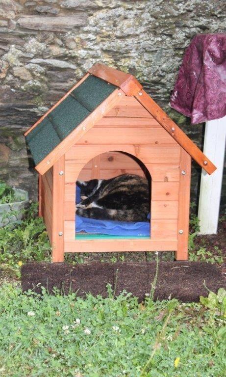 avis sur niche d 39 ext rieur zolia cl o pour chiens et chats. Black Bedroom Furniture Sets. Home Design Ideas