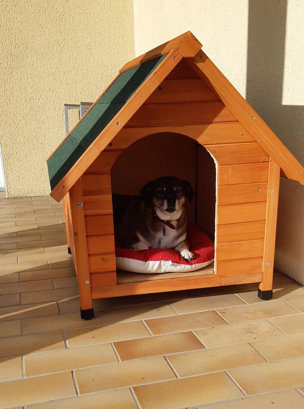 avis sur niche d 39 ext rieur zolia cl o pour chats et pour. Black Bedroom Furniture Sets. Home Design Ideas