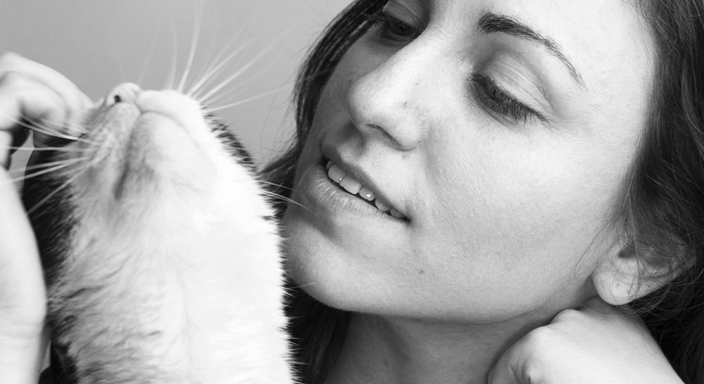 diffuseur feliway apaise les chats chez zoomalia
