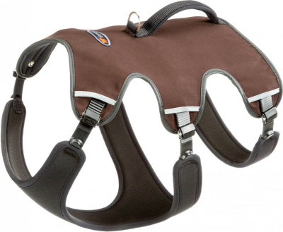 Dog harness recommended by Zoomalia
