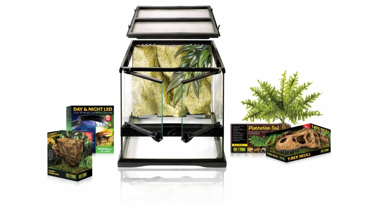 kit terrarium dinosaure small 30x30cm terrarium et meuble. Black Bedroom Furniture Sets. Home Design Ideas