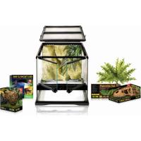 Kit terrarium Dinosaure Small 30x30cm (1)