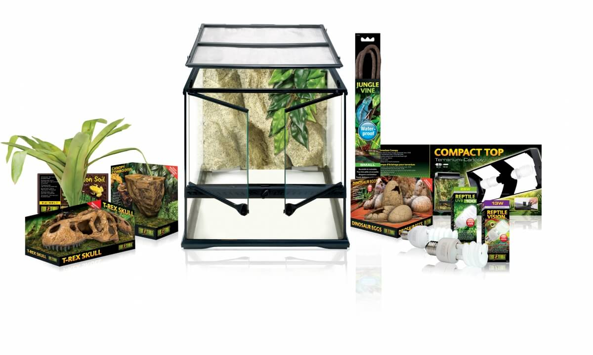 kit terrarium dinosaure medium 45x45cm terrarium et meuble. Black Bedroom Furniture Sets. Home Design Ideas
