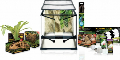 Kit Terrarium Dinosaure Medium 45x45cm