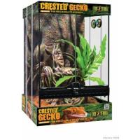 Kit PETIT Terrarium équipé Exo Terra pour gecko à crête 30x30x H45cm