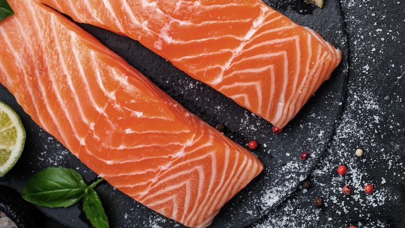 carnilove croquettes chiens saumon adulte