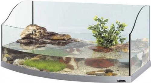 bac en plastique pour tortue d eau bande transporteuse. Black Bedroom Furniture Sets. Home Design Ideas