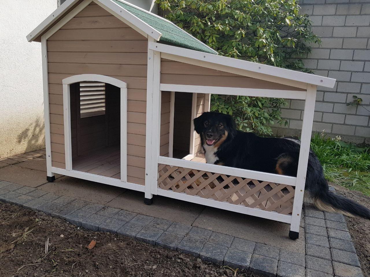 Hundehütte Mit Terrasse : hundeh tte mit terrasse falco ~ Watch28wear.com Haus und Dekorationen