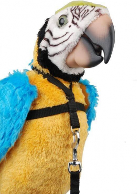 Harnais + longe pour perroquet - 2 tailles