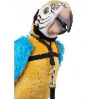 Papegaaientuig - 2 maten