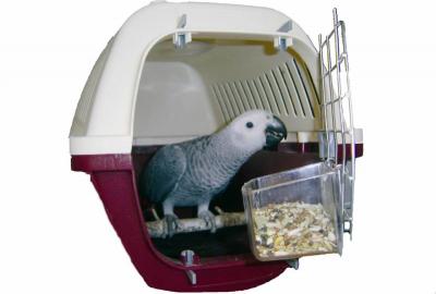 Cage de transport pour perroquet - 2 tailles