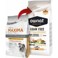 MAXIMA Grain Free Sans Céréales Hypoallergenic AGNEAU (2)