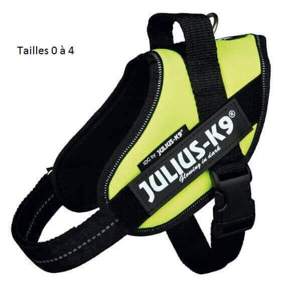 Harnais Power Julius-K9 IDC POWER jaune fluo _4