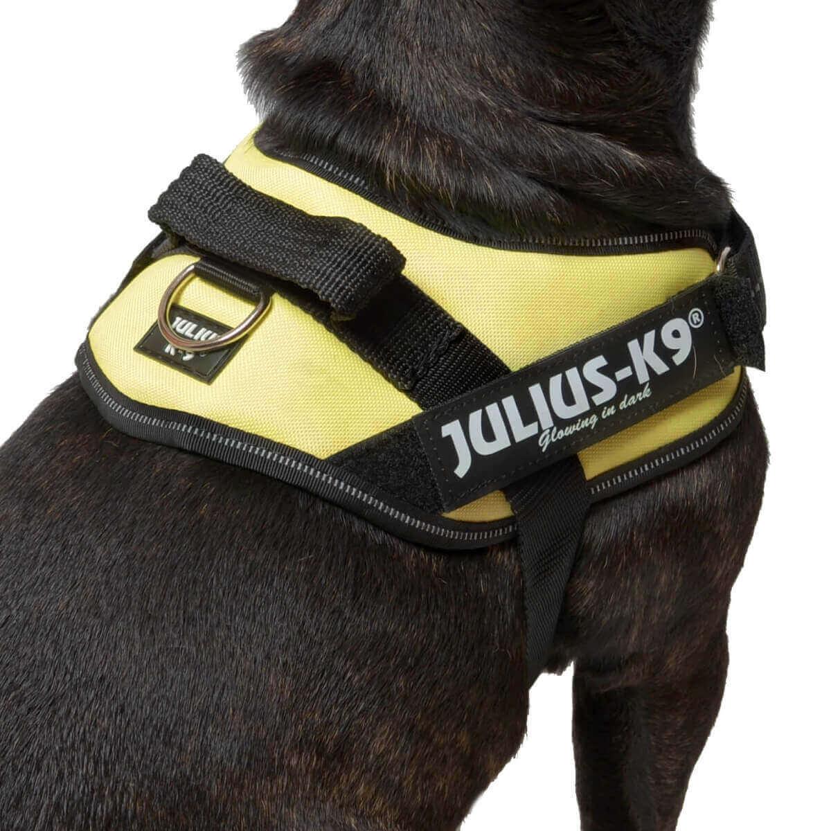 Harnais Power Julius-K9 IDC POWER jaune fluo _6