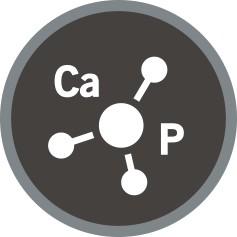 Croquettes pour chat riche en calcium et phosphore