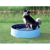 Piscine pour chien bleu clair/bleu