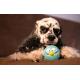 Jouet-chien-Lucky-Bird--Blue-menthe_de_Alexandra_99664962656e06f6a1e5df7.71962375