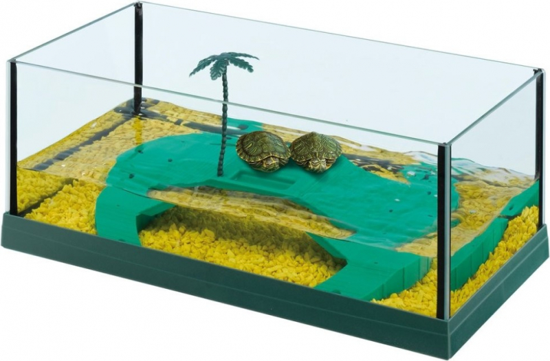 Waterschildpaddenbak Haiti 40