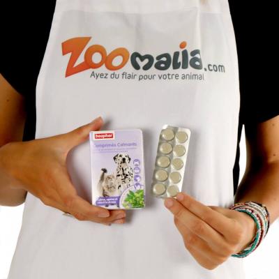 Comprimidos anti estrés para perros