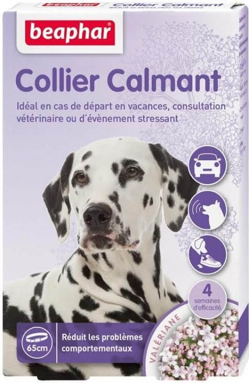 Collier calmant pour chien