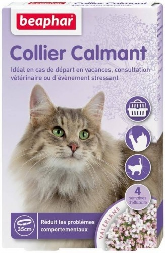 collier calmant pour chat anti stress. Black Bedroom Furniture Sets. Home Design Ideas