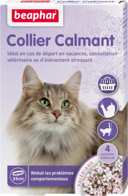 Collier calmant pour chat