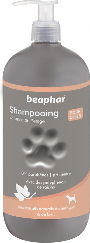 Shampoing Premium Eclat du pelage aux extraits de mangue et de kiwi