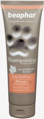 Shampooing Premium Eclat du pelage aux extraits de mangue et de kiwi