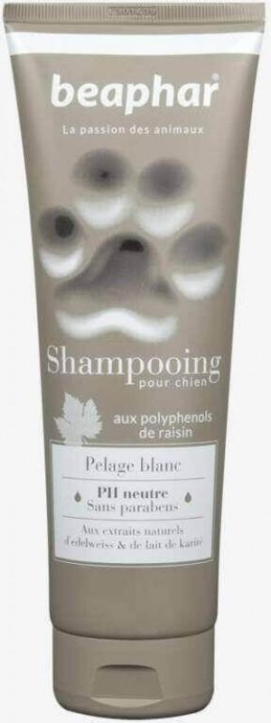 Shampooing Premium pelage blanc à l'extrait d'edelweiss et au lait de karité