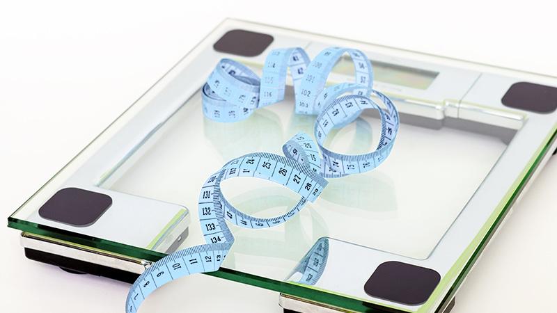 virbac hpm adult chat controle du poids