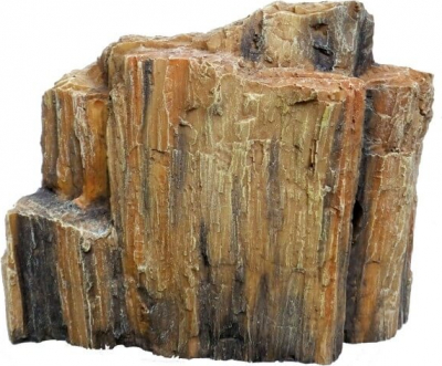 AQUA DELLA FOSSILIZED WOOD -4- 26.5x11x20.5cm