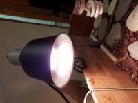 31250_Soporte-de-bombilla-en-cerámica-Glow-Light_de_Eva_4139090695adbac6ae96130.86181509