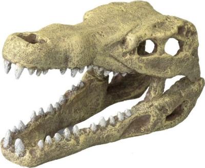 AQUA DELLA CROCODILE HEAD -M- ca.19,5x9,5x10,5cm