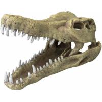 Décor AQUA DELLA CROCODILE HEAD -L- ca.32,5x17x20,5cm