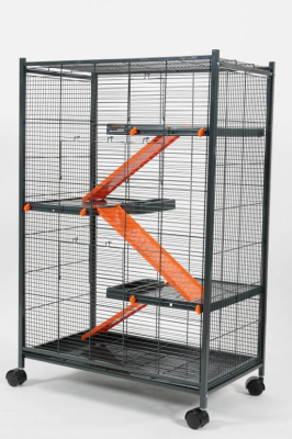 Cage Indoor Laxi Loft 2 Orange pour Rat et Furet