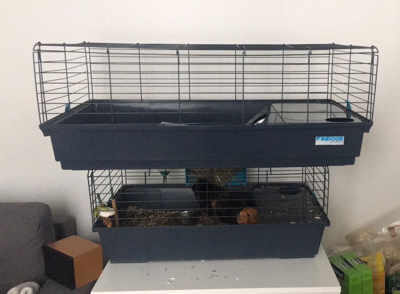 cage indoor pour lapin cochon d 39 inde bleue grise. Black Bedroom Furniture Sets. Home Design Ideas