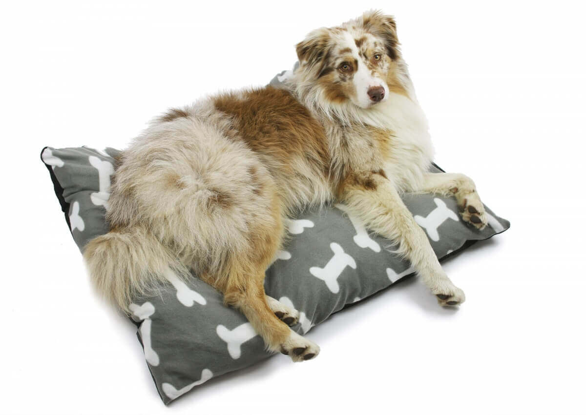 coussin zolia liloo pour chien et chat coussin et tapis. Black Bedroom Furniture Sets. Home Design Ideas