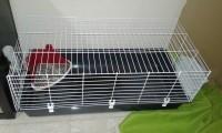 31311_Jaula-para-conejos-ONYX-Ambiente-100-cm_de_Martina_78428245758a6f842511058.20734590