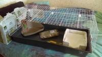 Cage-pour-lapin-ZOLIA-ONYX-Ambiente-100cm_de_Carole_9731001205988346fdb9338.49753959