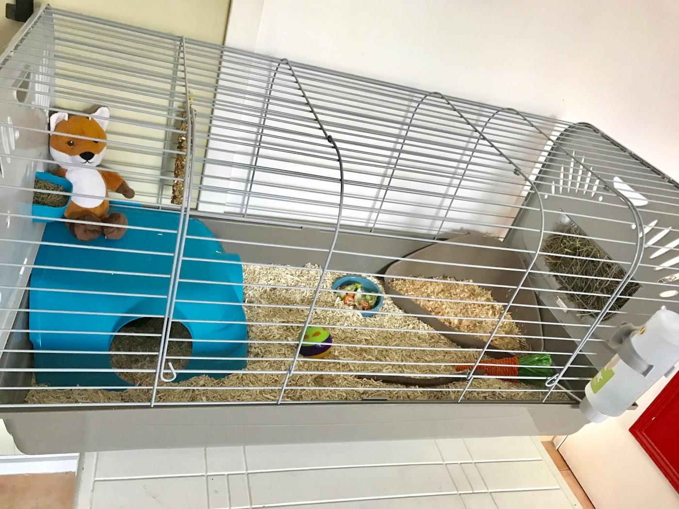 avis sur cage zolia caesar pour lapin et cochon d 39 inde 100cm. Black Bedroom Furniture Sets. Home Design Ideas