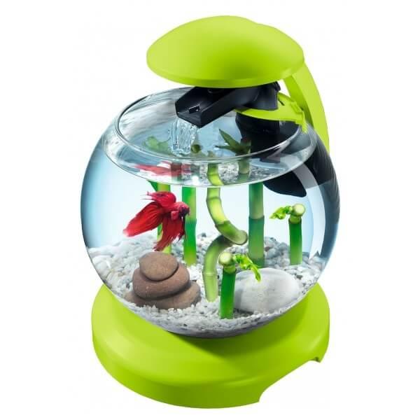 Tetra cascade globe vert aquarium et meuble for Petit aquarium rond