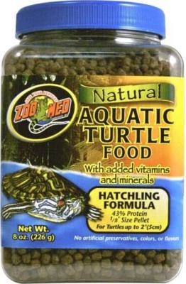 Jeune tortue d'eau