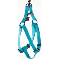Harnais baudrier turquoise