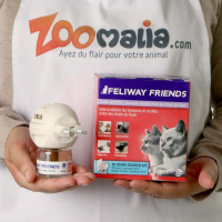 Feliway Friends Diffuseur - Facilite la cohabitation entre chats