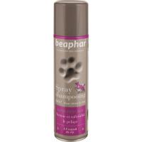 Spray shampooing sec