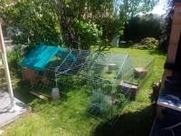 Enclos,-cage-d'exterieur-ferme-ZOLIA-TITO-220cm_de_MELANIE_1459285335cd9731ac88e45.58575580