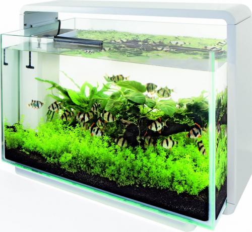Acuario Superfish Home 80 en blanco o en negro
