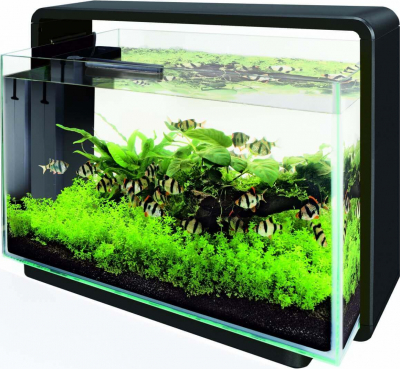 Aquarium blanc ou noir - Superfish Home 80